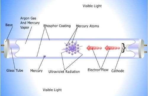 Diagram Florescent Light Tube Diagram